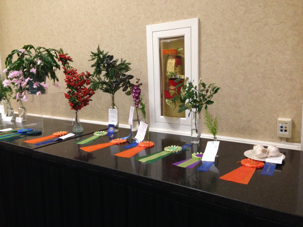 "Horticulture at ""Starry, Starry Night"" WSFGC Flower Show 11/2015"