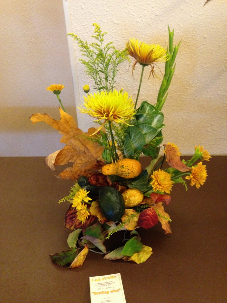 """Fall Frolic"" Flower Show 10/2015"