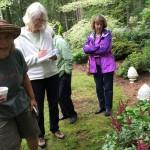 Janel's Garden 8/2016